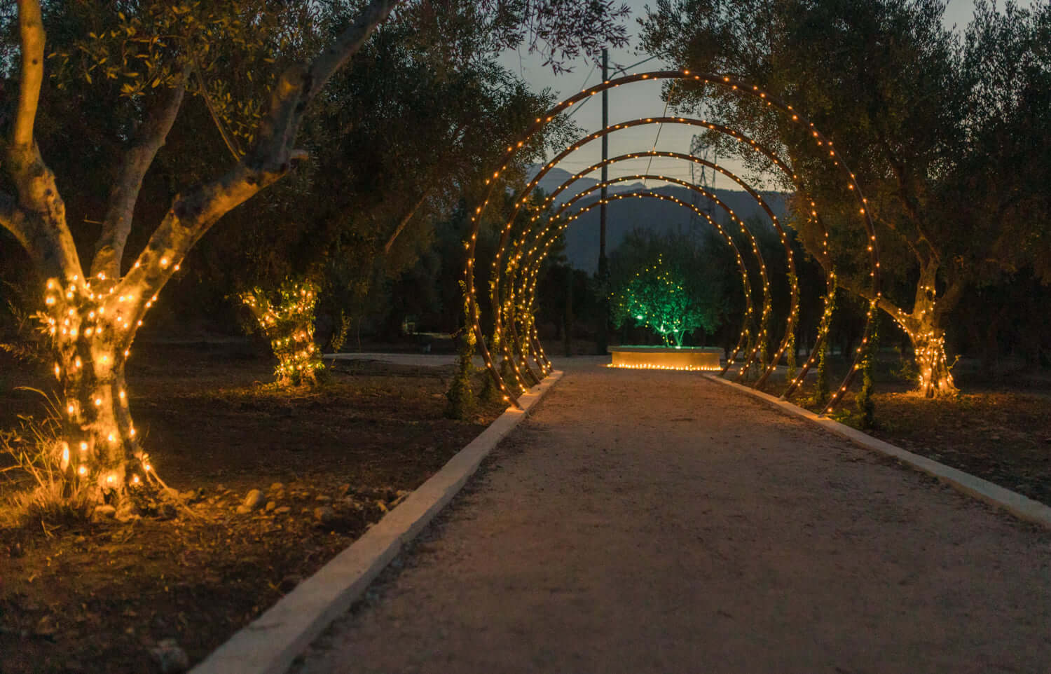Majestic Olive Grove - The Bridal Consultant