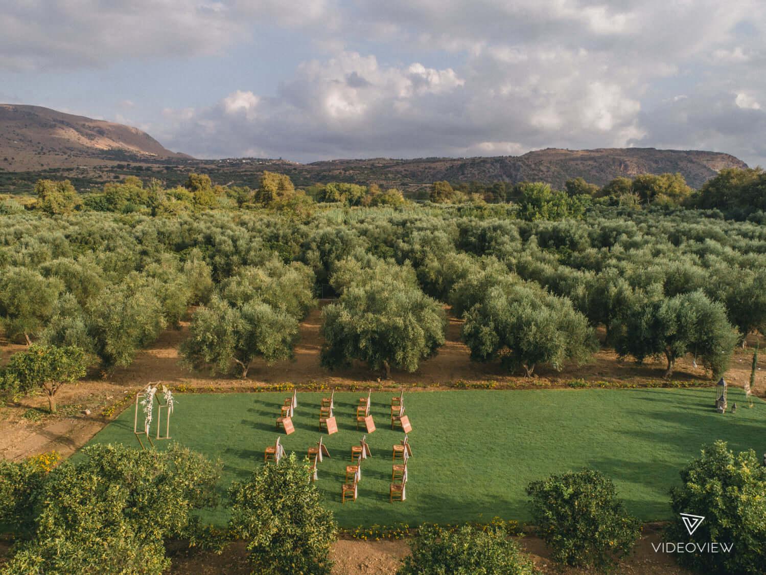Majestic Olive Grove - The Bridal Consultant
